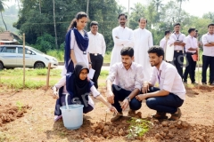 Herbal Medicinal Plantlets Rooted at SPC Puttur